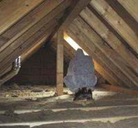 Schimmelpilz im Dachbodenbereich