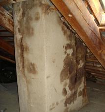 Brandvermeidung durch regelmäßige Sanierung des Kamins