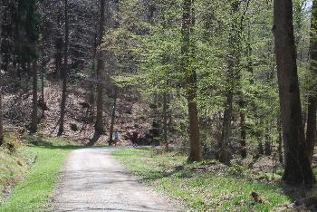 Entscheidung im Natursachverständige  Urnenwald-Prozess